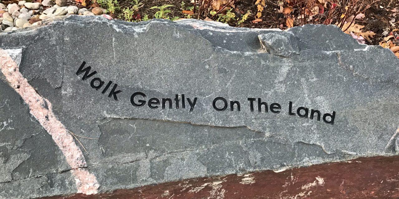 Walk gently on the land – Scotiabank Toronto Waterfront Marathon
