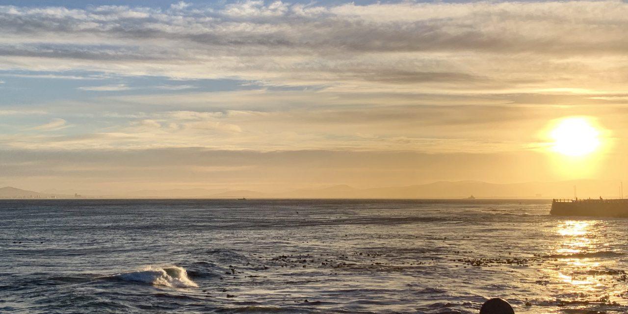 Two Oceans Marathon – The Alternative One Ocean Route