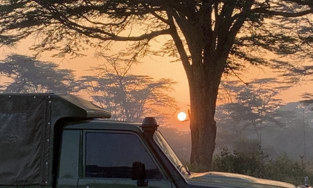 The Virtual Lewa Safari Marathon – running during lockdown